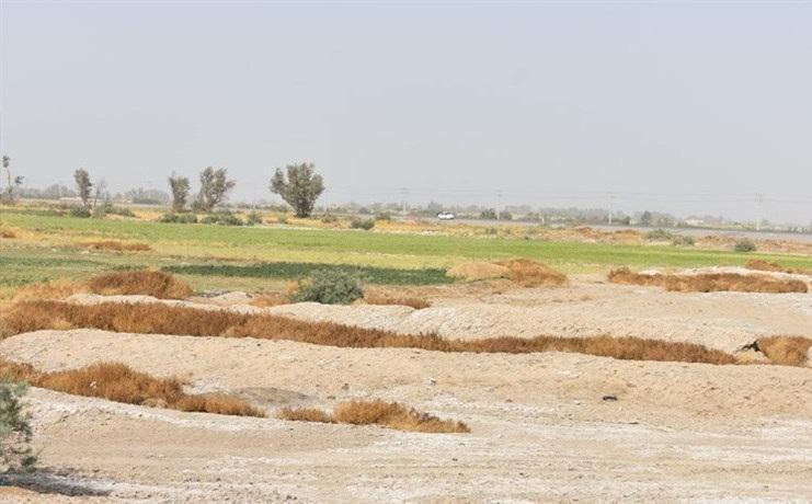 خسارت بیش از 540 میلیارد تومانی سرمازدگی و سیل امسال در استان سمنان