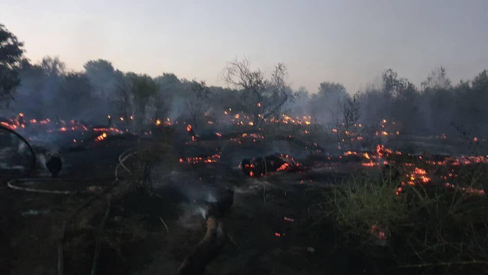 خبرنگاران سه هکتار از جنگل های دزفول در آتش سوخت