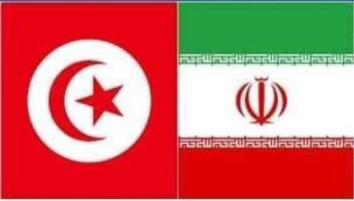 خبرنگاران ایران و تونس بر گسترش همکاری های دوجانبه تاکید کردند