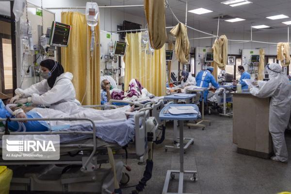 خبرنگاران سبزوار در بستری بیماران کرونایی رکورد زد